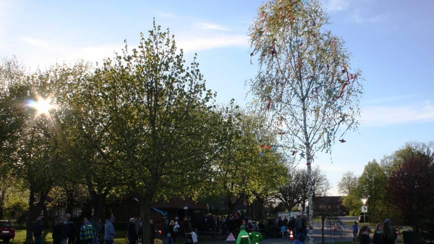 Aufstellen des Maibaums